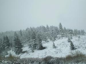 Snow on the ground on LaVeta Pass