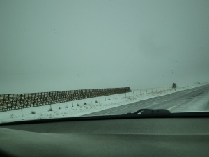 Snow fencing along the road