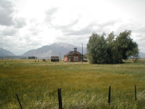 Old Schoolhouse and Cottonwood Tree, Nathrop, Colorado. Taken from Highway 285 August 2001