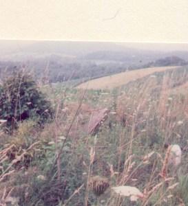 Elizabeth Ann Beall Grave, Beallsville, Washington, Pennsylvania. Photo taken Summer 1992