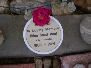Brian's plaque and a rose from his rose bush